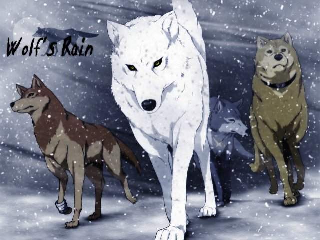 News: Know Your Anime: Wolf's ...
