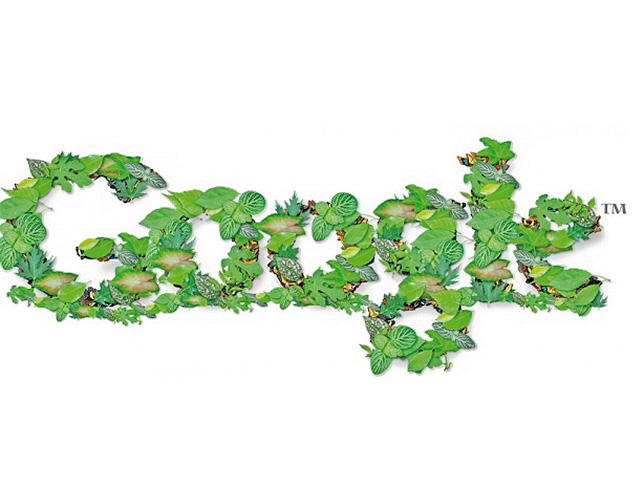 Green News, eco news, eco-friendly tech, green tech, local news, regional news, Africa, South Africa, Google